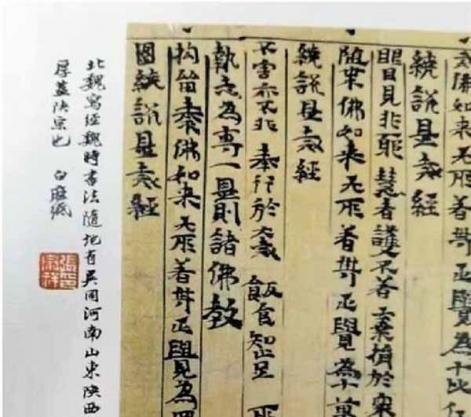 张宗祥沙孟海对敦煌遗书书学价值的认识